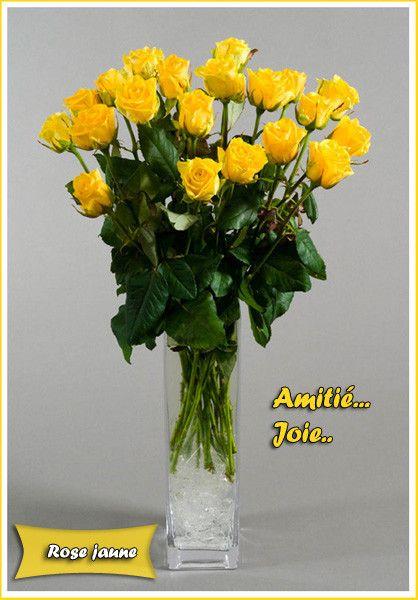 langage des fleurs rose jaune. Black Bedroom Furniture Sets. Home Design Ideas